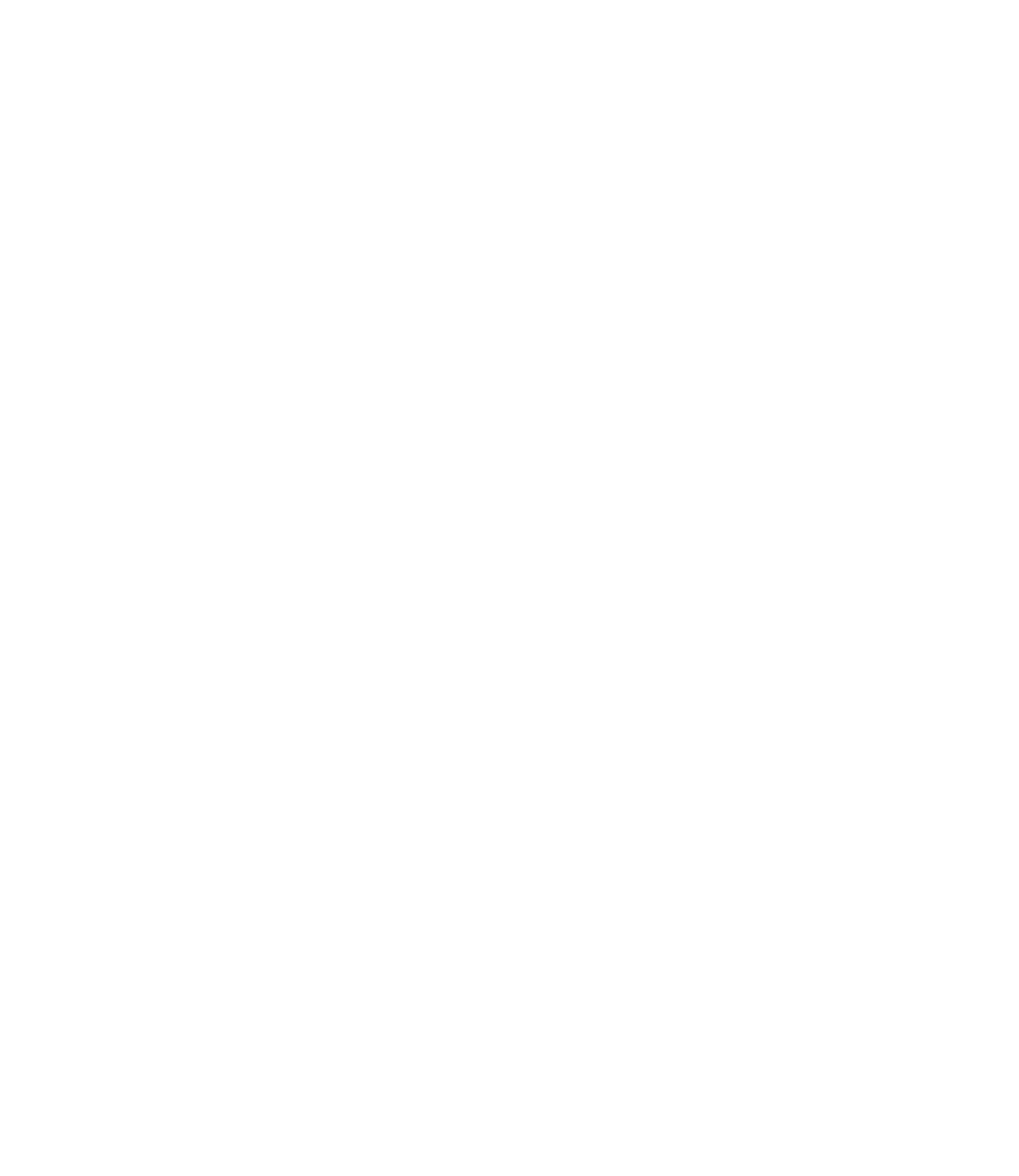 Appical logo beeldmerk negative